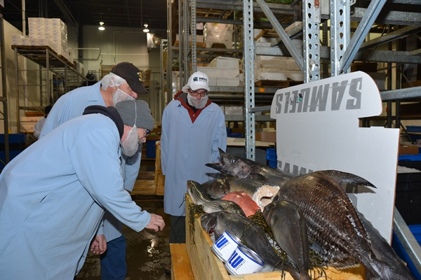 Sea Grant answers tough seafood questions