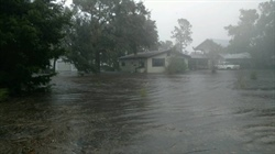Sea Grant Helps Communities Navigate the Program for Public Information Process, Potential Discounts on Flood Insurance