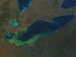 Ohio Sea Grant to announce 2018 Harmful Algal Bloom forecast for Lake Erie on July 12