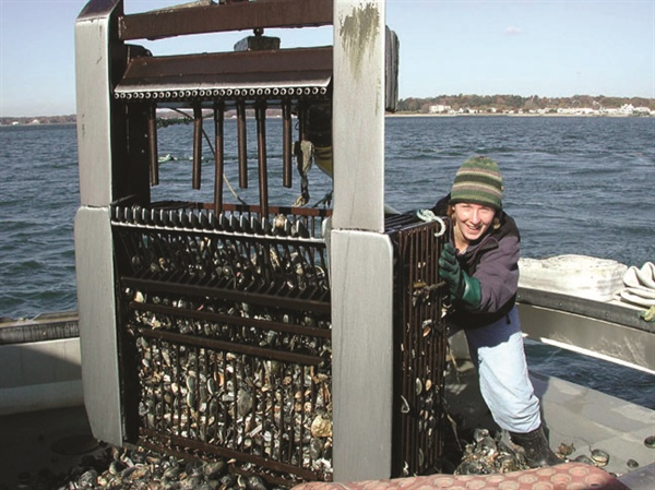 Connecticut Sea Grant helps get loss protection for shellfish and seaweed farmers