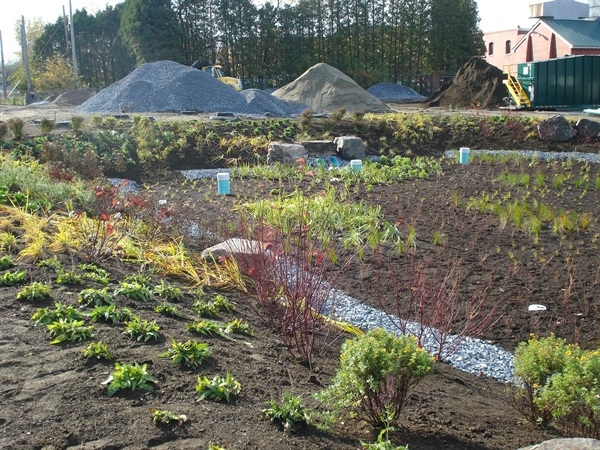 Community Resilience: Prioritizing Green and Natural Stormwater Infrastructure in Vermont Development
