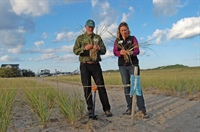 Sea Grant staff and UNH Coastal Habitat Restoration Team members prepare beachgrass  to be planted in dunes near Hampton Beach State Park.