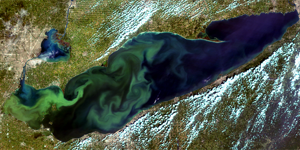 NOAA, partners release harmful algal bloom forecast for western Lake Erie