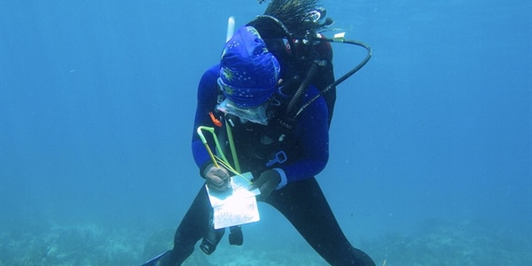 Pathways to marine policy: Knauss Fellows build on past experiences with NOAA