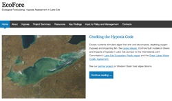 Ecofore Website about Lake Erie Hypoxia