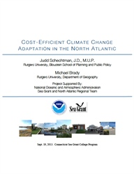 Cost-Efficient Climate Change Adaptation in the North Atlantic Report