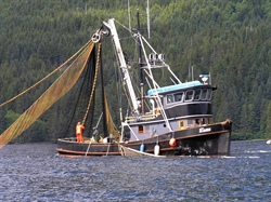 NOAA Fisheries Service and Sea Grant Announce 2013 Fellowship Awards