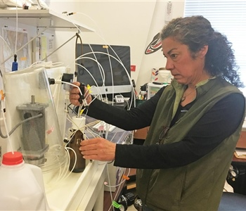 Sea Grant Leads the Way for Ocean Acidification Research in Alaska