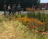 A group learns about the benefits of rain gardens while following Burlington's Green Stormwater Infrastructure Bike Tour, developed by LCSG. Photo credit: Kris Stepenuck