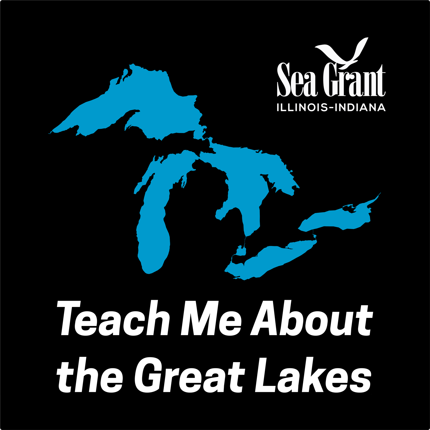 Teach Me about the great lakes logo